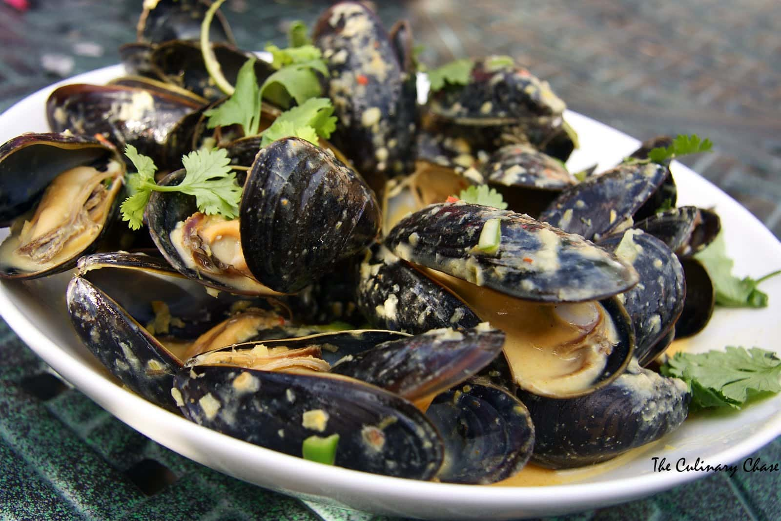 ... steamed mussels with coconut thai mussels indian curry steamed mussels