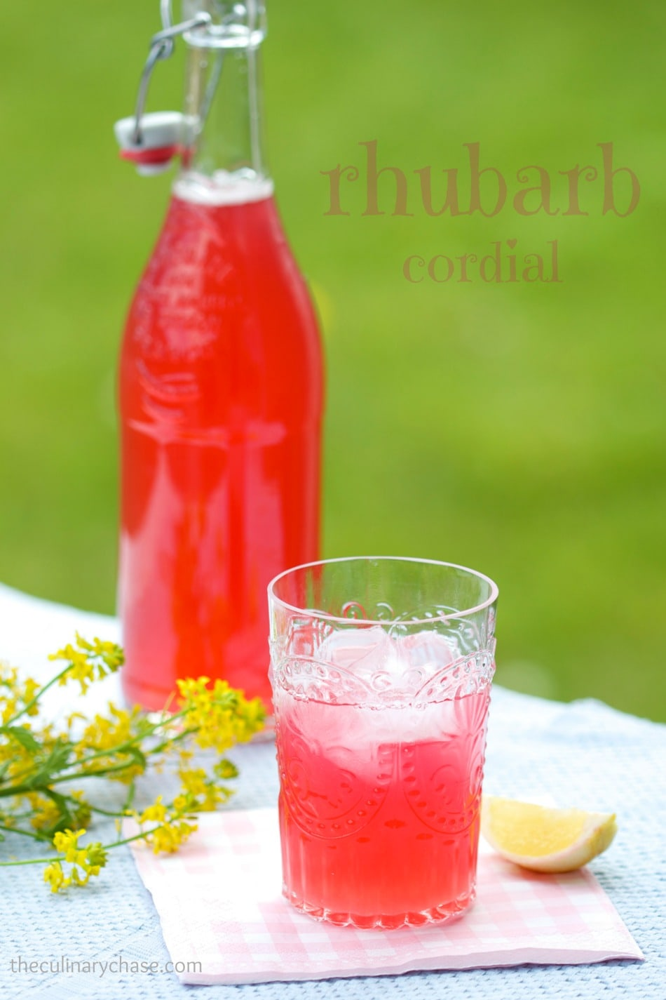 rhubarb cordial the culinary chase. Black Bedroom Furniture Sets. Home Design Ideas