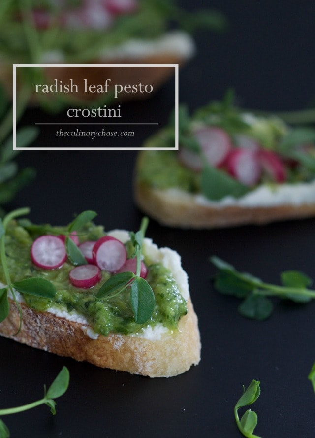 Radish Leaf Pesto Crostini