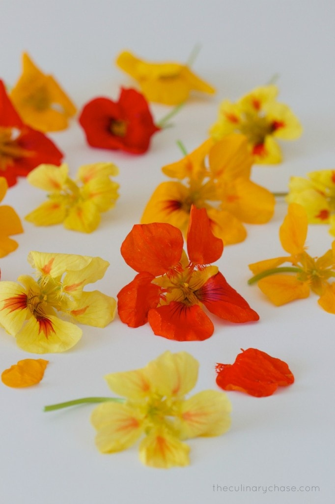 nasturtiums by The Culinary Chase