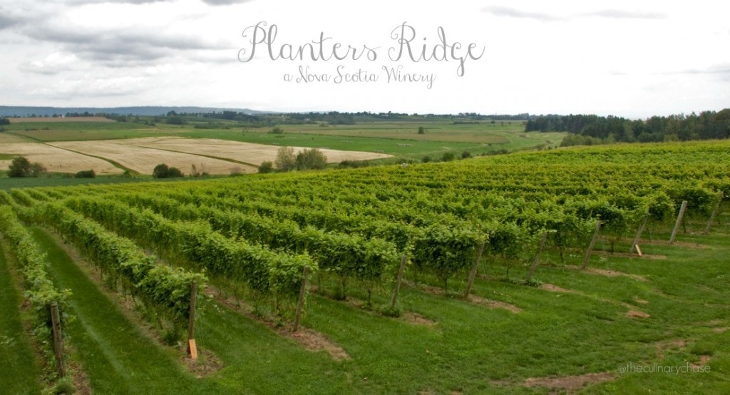 Planters Ridge – a Nova Scotia Winery