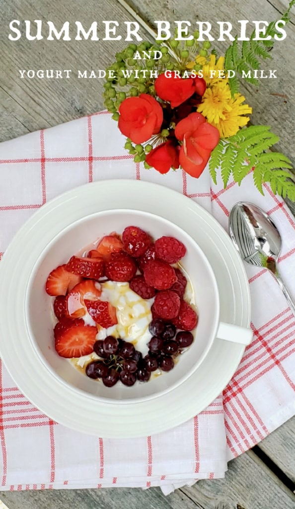 summer berries & yogurt